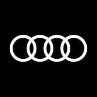 Audi VP Strategy
